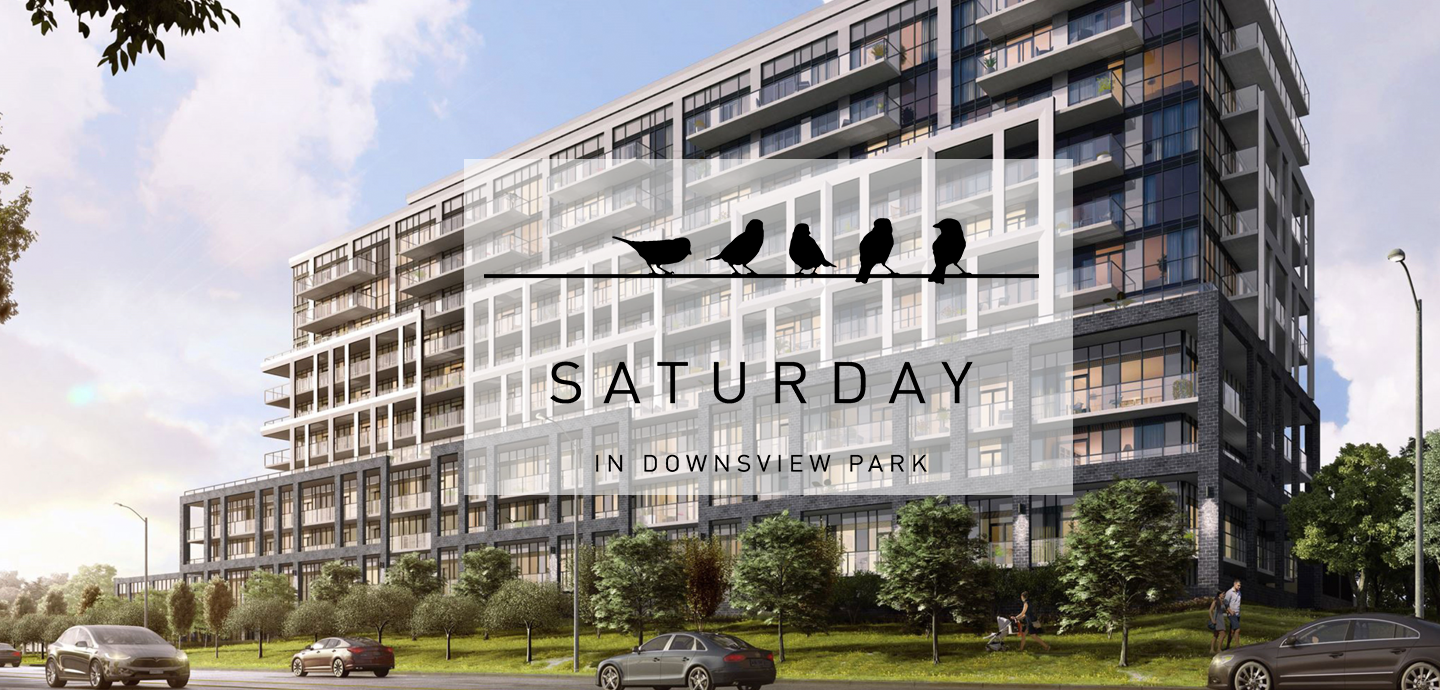 downsview park condos